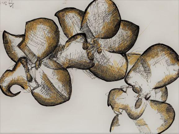 pentekeningen bloemen door Martijn Kuijs