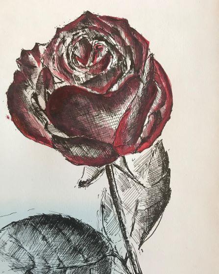 pentekeningen roos door Martijn Kuijs
