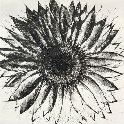 pentekeningen zonnebloem`door Martijn Kuijs