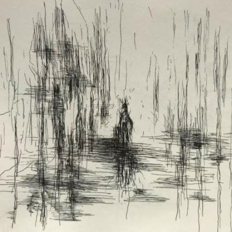 pentekening moeras door Martijn Kuijs